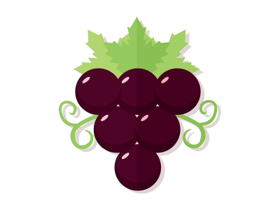 Odroda vína